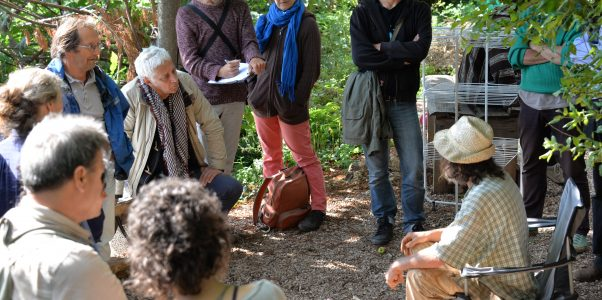 Agroecology Transformations